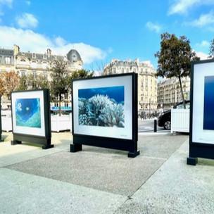 1 Océan : exposition de photos sous-marines à la Gare de Lyon