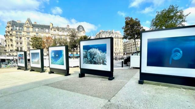 1 ocean exposition photo Gare de lyon