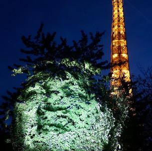 """Musée du Quai Branly : projections de nuit """"Dans la mémoire du monde"""" - Paris 7"""