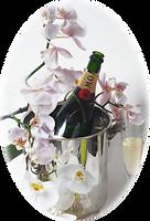 Champanhe (2).png