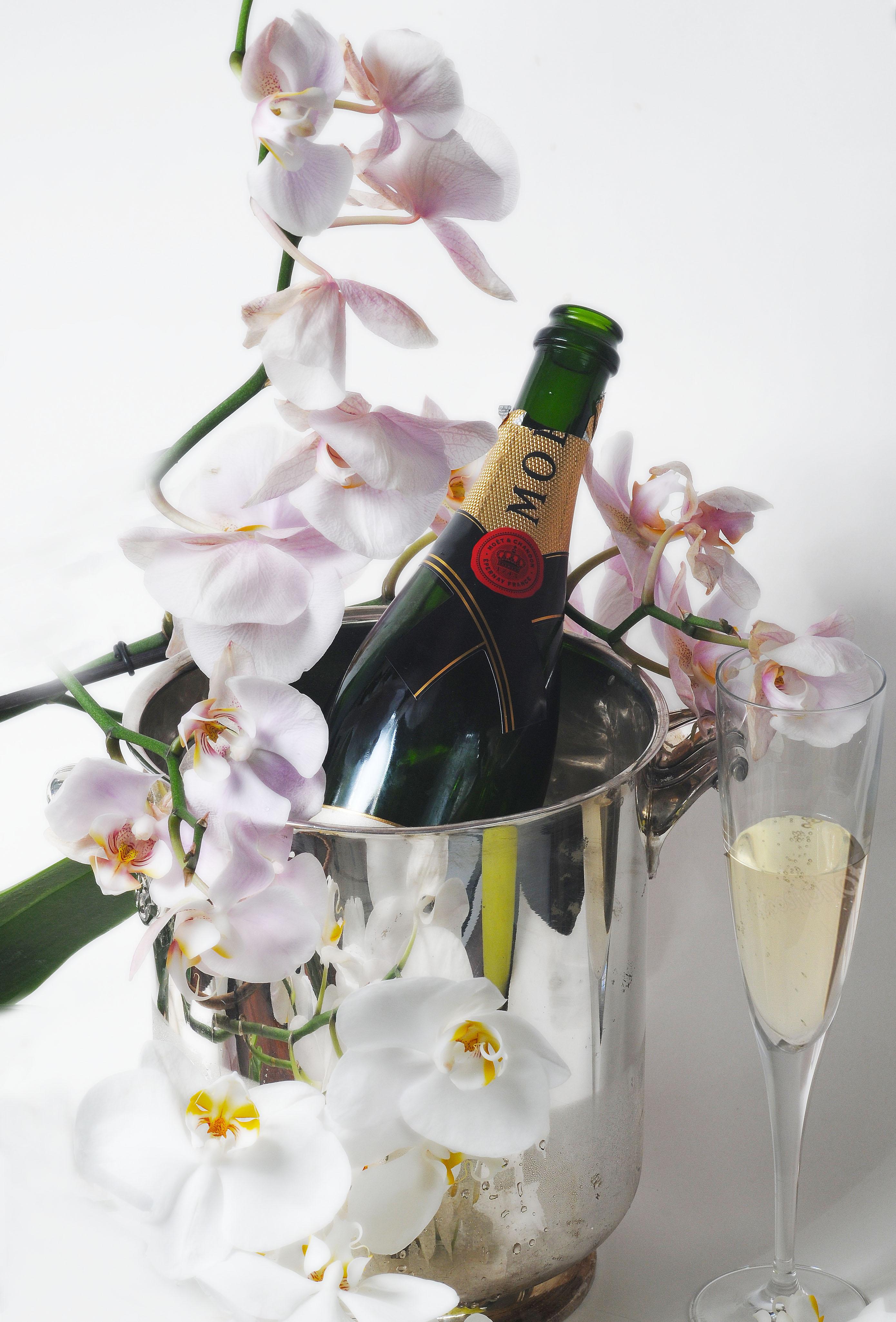 Champanhe (2)