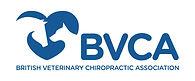 thumbnail_bvca-logo.jpg