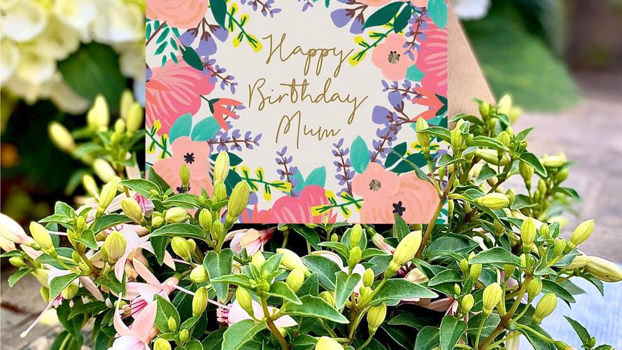 Happy Birthday Mum Mini Card