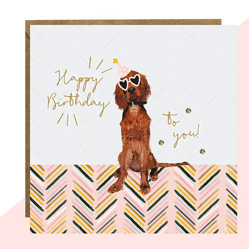 Irish Red Setter Birthday Card