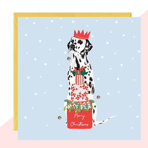'Dalmation' PACK OF 5 Christmas Cards
