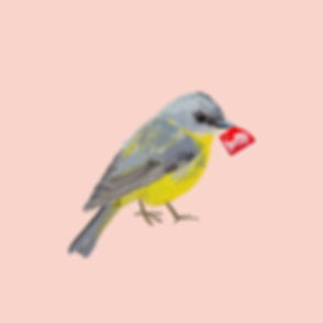 First Class Songbird.jpg