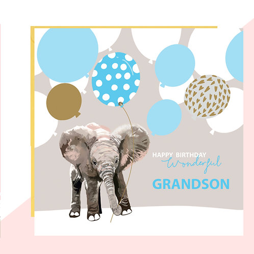 Wonderful Grandson Birthday Card