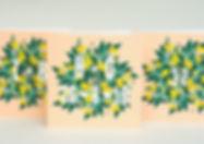 Personalised Lemons 1.jpg