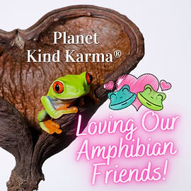 Kind Karma Worldwide Frog Awareness.