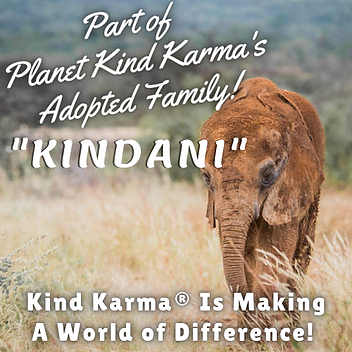 Kind Karma - Kundani 2.png