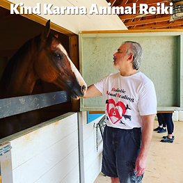 Man Giving Reiki to a Horse.