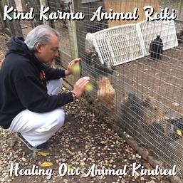 Kind Karma Animal Reiki Session.