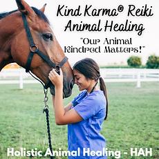 Kind Karma Worldwide Holistic Animal Healing.