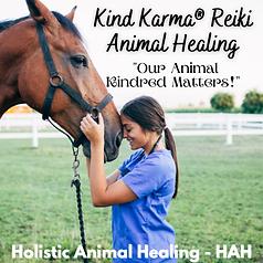 Kind Karma Holistic Animal Healing