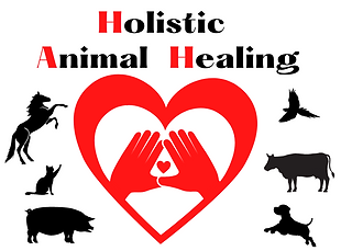 Domestic animals by a heart with healing hands.