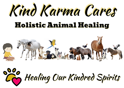 Holistic Animal Healing - 22c.png