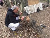 Kind Karma Reiki Sessions on Animals.