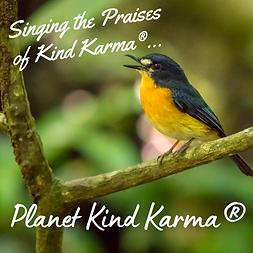 Kind Karma Cares Animal Initiative.