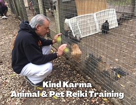 Kind Karma Animal Reiki - 3a.png