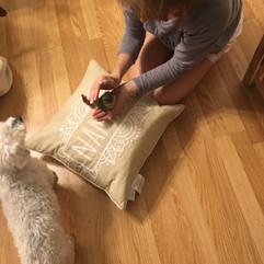 Kind Karma Reiki Animal Healing