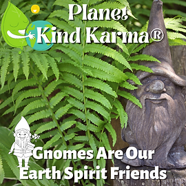 Planet Kind Karma Initiative.