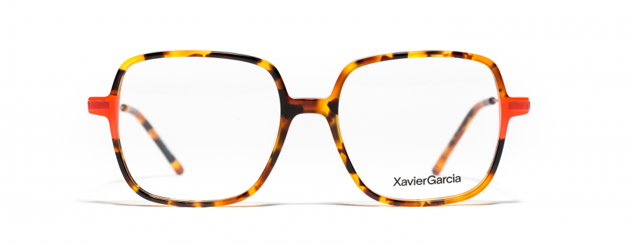 Xavier Garcia FELISA C01