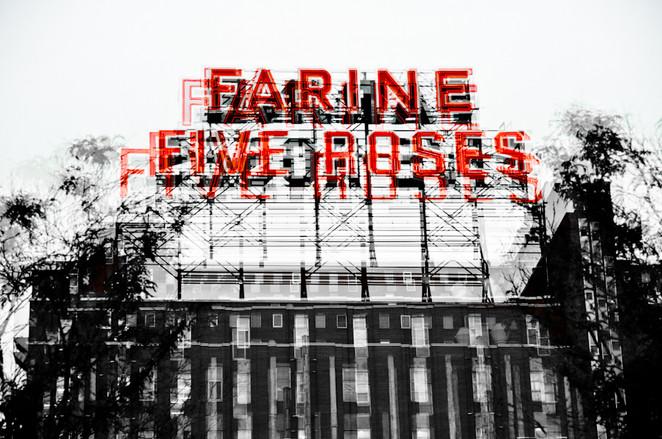 farine five roses flour