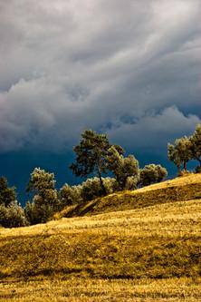 tempesta giallo