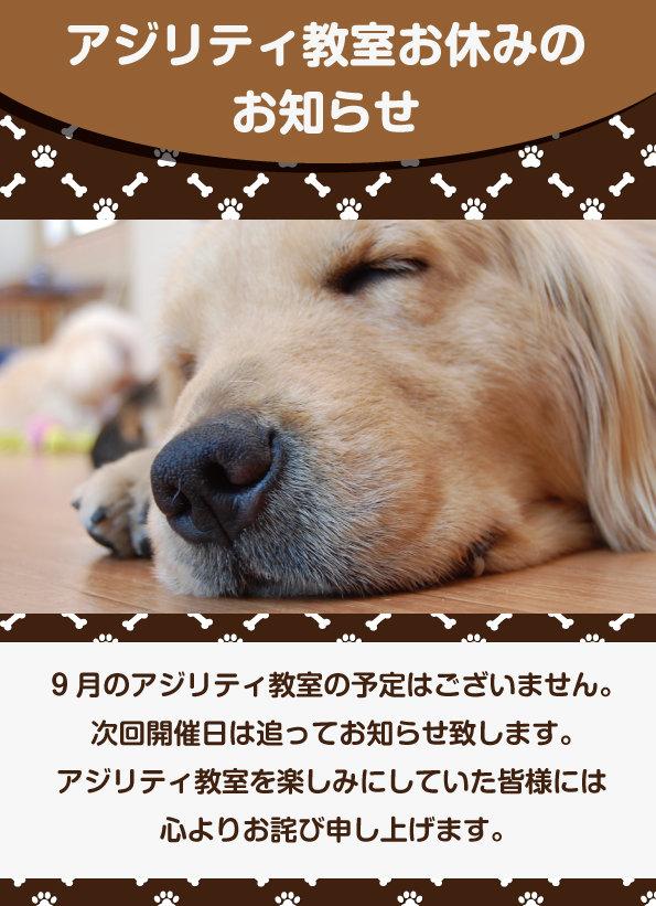 アジお休み9月.jpg
