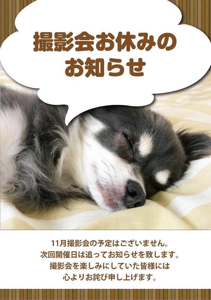 2021年11月撮影会おやすみ.jpg