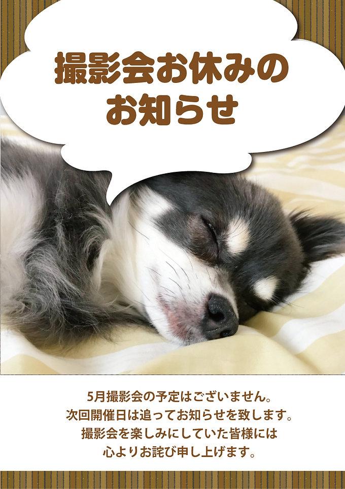 2021 5月撮影会おやすみ.jpg