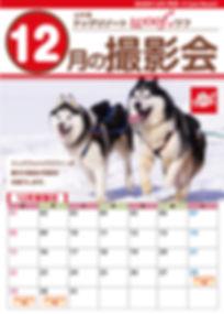 2019 12月撮影会ワフ.jpg