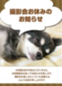 2020 4月撮影会おやすみ.jpg