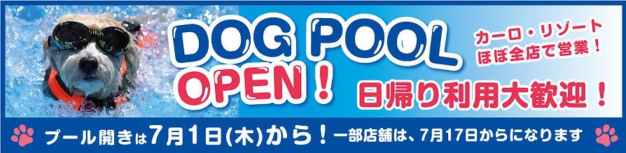 夏期ドッグプール告知POP 2021バナー.jpg