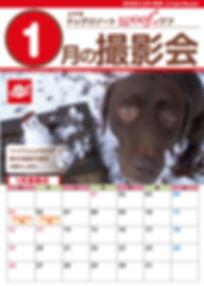 2020 1月撮影会わふ.jpg