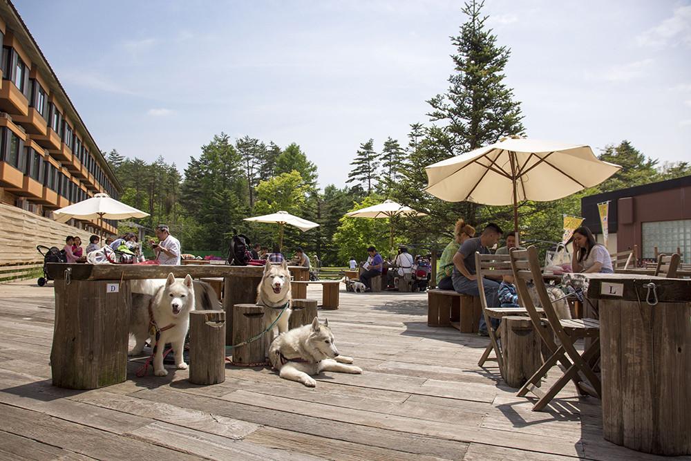 天気の良い日はカフェテラスで