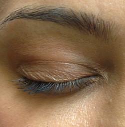 Microblanding Eyebrows
