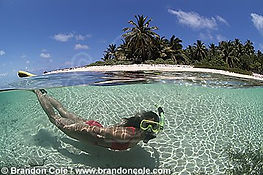 Having fun snorkelling