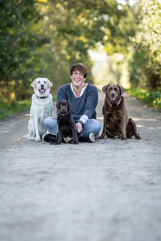 Tiergestütze Arbeit mit Hunden