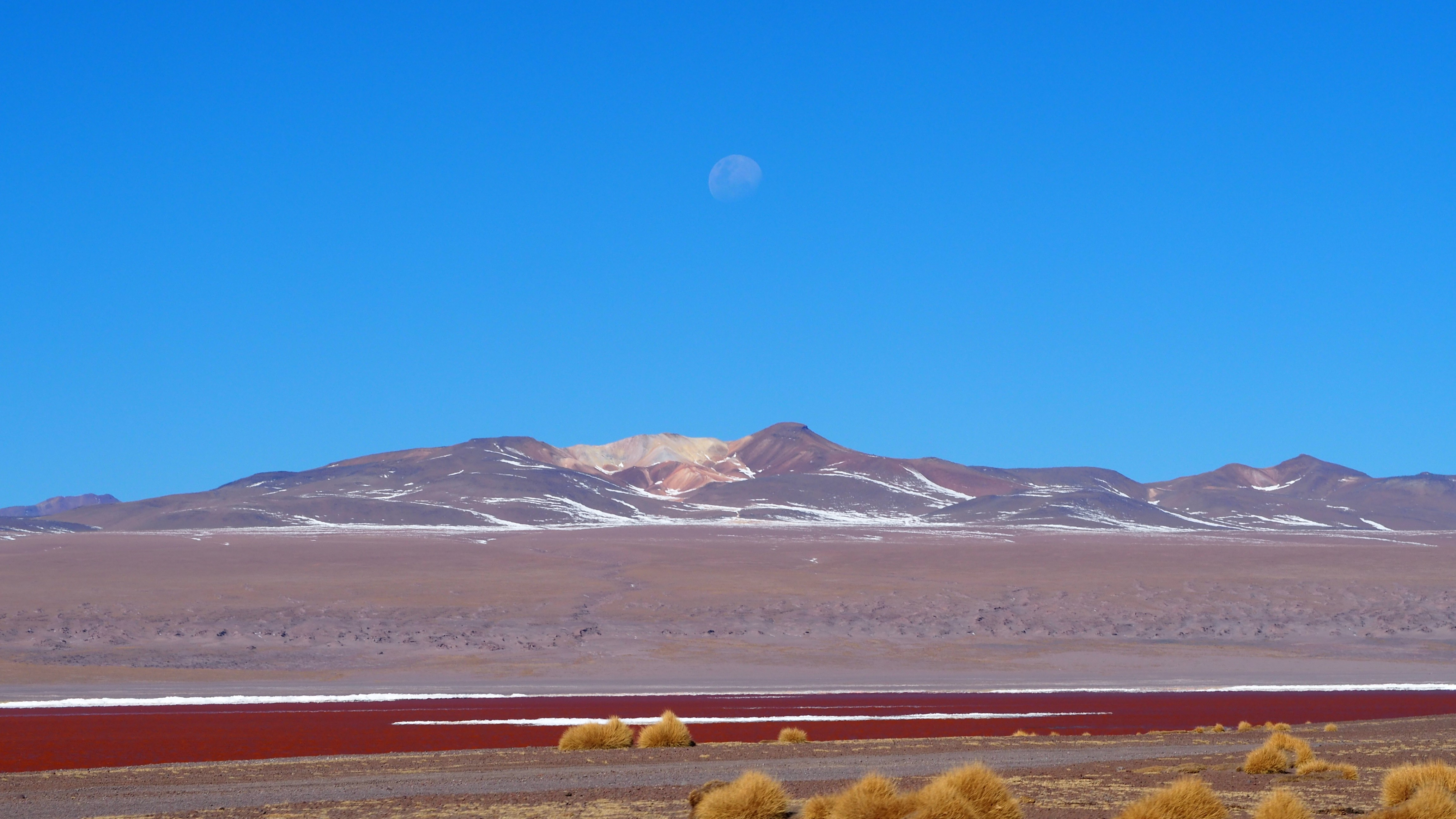 moon rise over Laguna Colorada