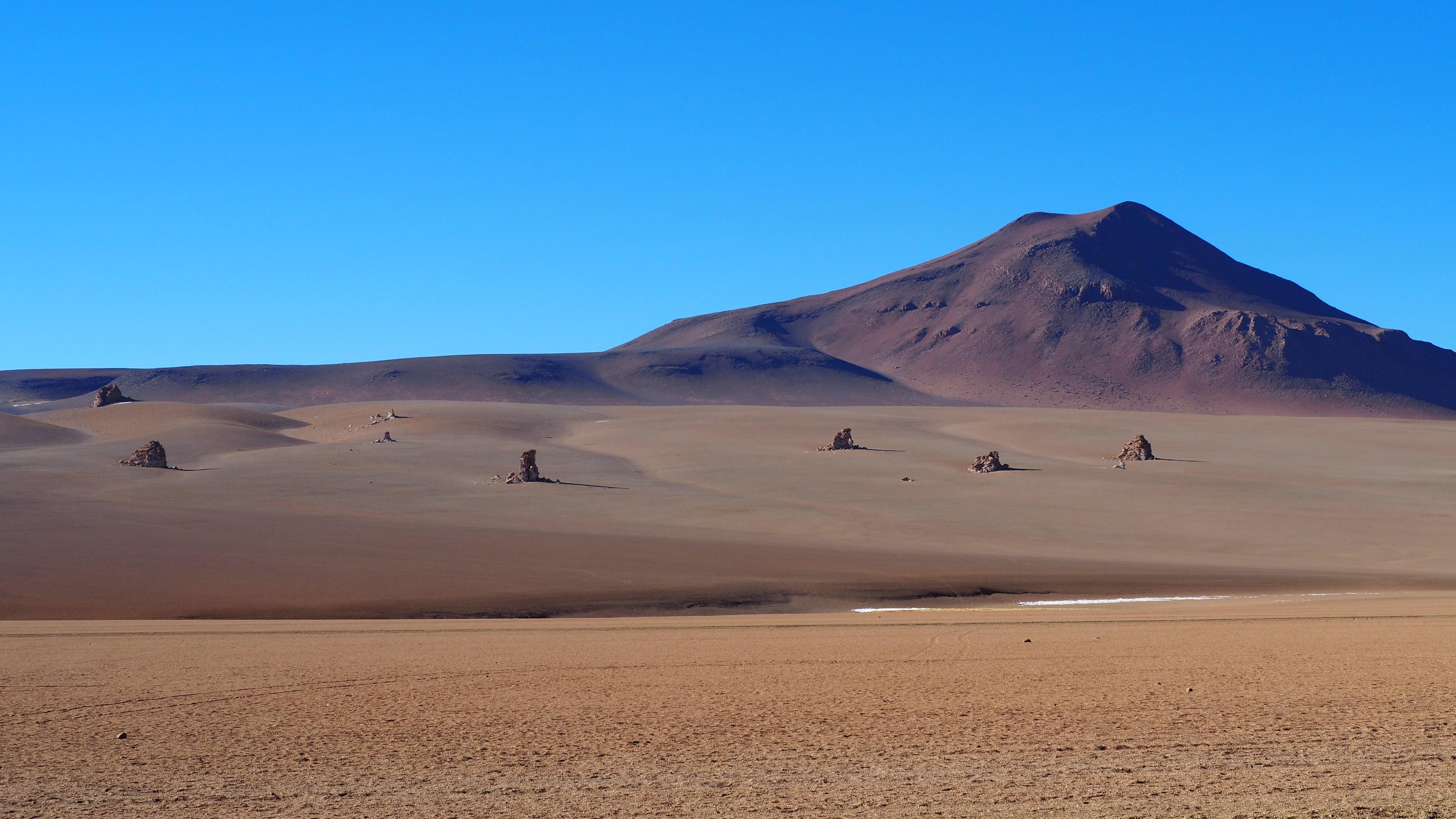 Salvador Dalí desert