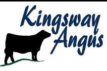 Kingsway Angus.png