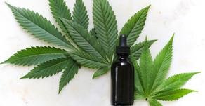Le cannabis CBD, de quoi s'agit-il et est-ce intéressant pour la santé ?