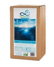 Vitalisea-1000x1000-1.png