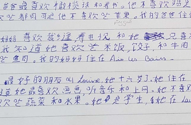 Chinois_LV2_Cours_collectifs_40h±.jpg
