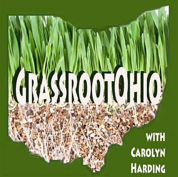 Grassroot.jpg