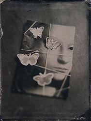 butterflies over a tied lady low.jpg