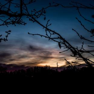 Dark Theme Photographs, photo #5