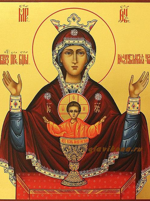 """Молебен перед иконой """"Неупиваемая Чаша"""""""