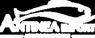 logo antinea import blanc.png